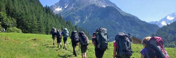 1478 – 'Alpine Eldelweiss' – Switzerland