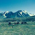 Kutchen Summit range