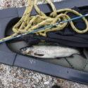 Fish Canoe