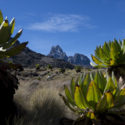 Climb up Mount Kenya, March 2017, Kenya.