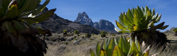 Mount Kenya Expedition – FANY (PRVC)