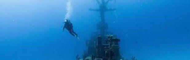 Northern Tartan Dive