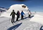 Frimley Glacier 2019