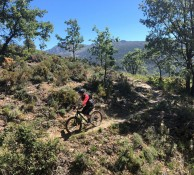 Finn Swift Singletrack 2019