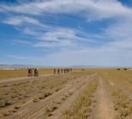 Mongolian Endurance 2019