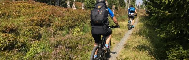 Finn Harz Endeavour 2019